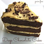 Deep Chocolate Cake {grain free} | Butter Nutrition