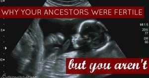 Why your ancestors were fertile… but you aren't.