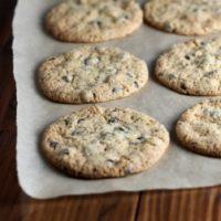 The Best Crispy Gluten Free Chocolate Chip Cookies